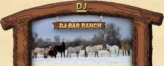 Montana Horses in Winter at the DJ Bar Ranch